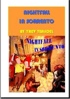 Nighfall in Sorrento book